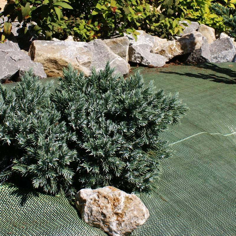 Gegen Unkraut hilft dieses grüne Bodengewebe